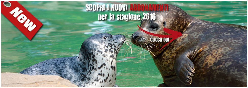 abbonamenti-banner-homepage
