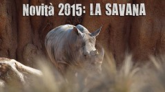 Novità 2015: La Savana