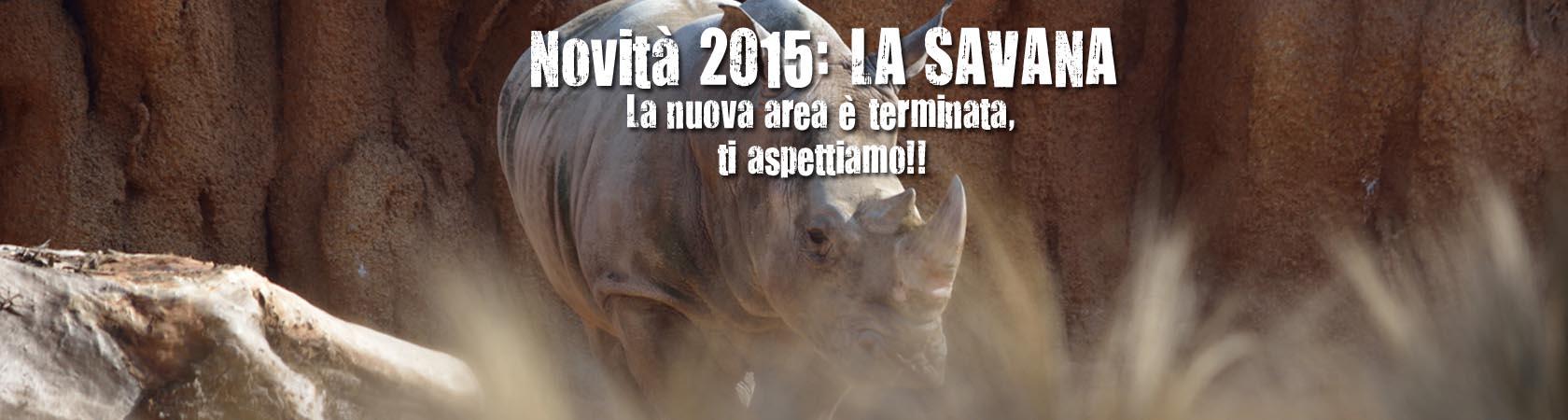 savana-novita-2015-small-ok