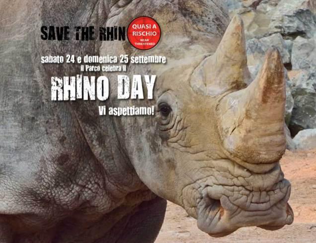 rhinoday-new-cornelle
