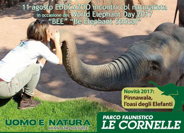 elephant-day2017-newsdefok