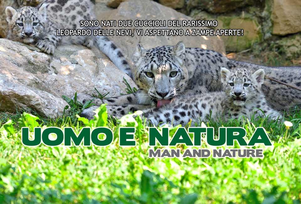 slider-home-cuccioli-leopardo-delle-nevi