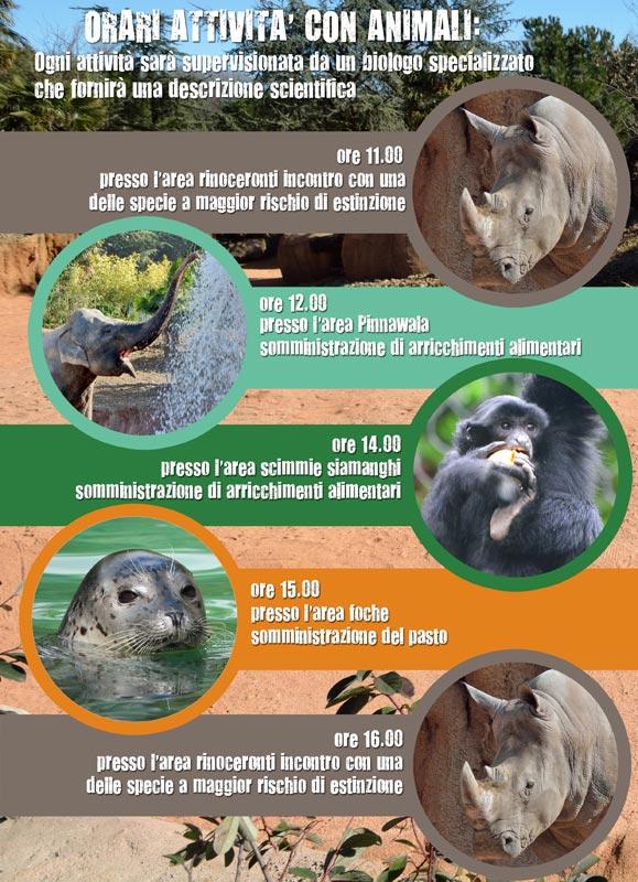 educazooA4-rhino2017-lecornelle
