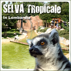 Selva Tropicale in Lombardia