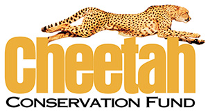 Cheetah Conservation Found